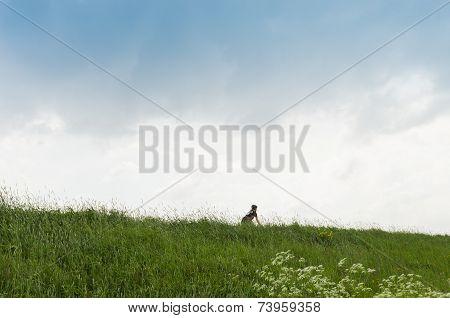 Lonely Biker On Dike