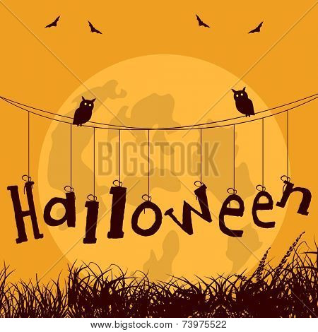 Halloween stylish text hanging on rope and owls sitting on rope for Halloween party celebration poster design.