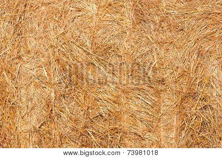 Haystacks texture