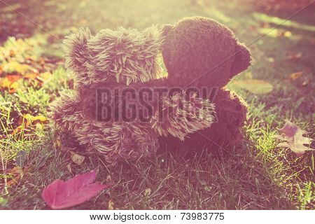 Two stuffed bears hugging.  Instagram effect