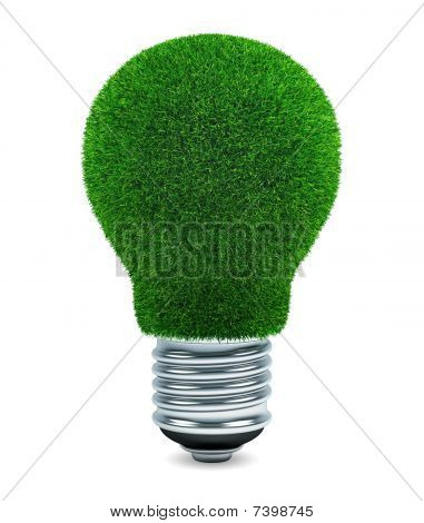 Grassed light bulb