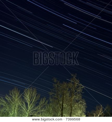 Star trails over winter forest