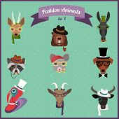 pic of wild donkey  - Cute fashion Hipster Animals with flat design - JPG