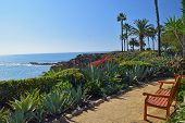 stock photo of bench  - A bench overlooks the beautiful scenery of Laguna Beach - JPG