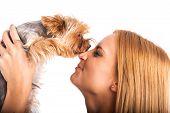 foto of yorkshire terrier  - Beautiful woman - JPG
