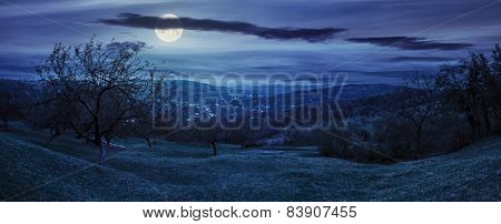 Panorama Of Apple Orchard On Hillside At Night
