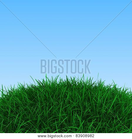 Background with green grass and blue sky, 3d render