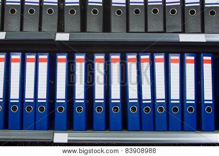 Blue Archive Folders