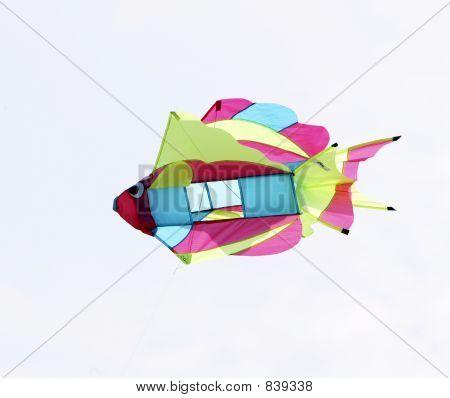 Fish kite closeup