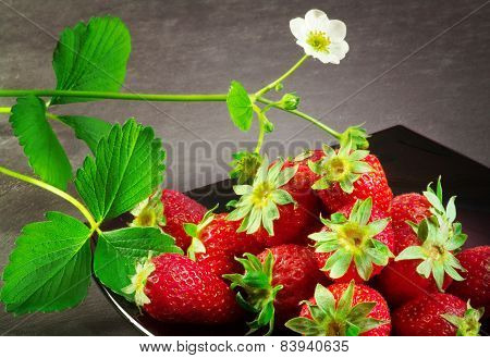 Strawberry In A Black Plate Over Ardesia Background
