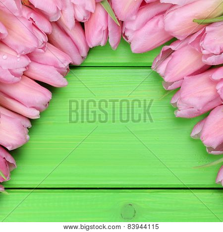 Tulips Flowers In Spring Or Mothers Day With Copyspace