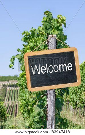 Welcome written on a blackboard in the vineyards