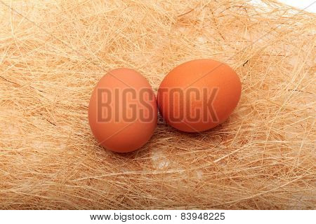 Golden Egg In A Makeshift Nest. On A White Background.