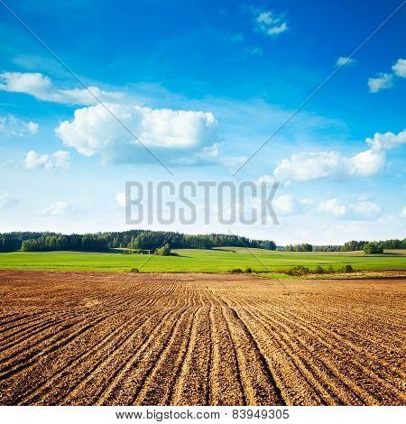 Spring Landscape with Plowed Field and Blue Sky