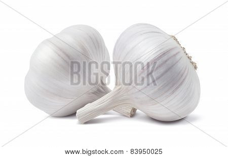 Two Garlic Knobs Isolated On White Background