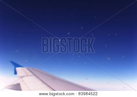 Ice crystals on the airplane window