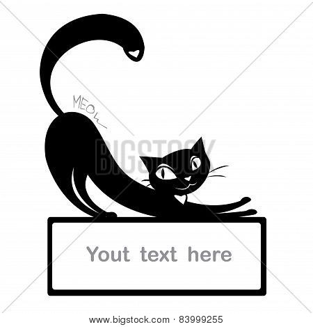 Background With Black Cat And Space For Text