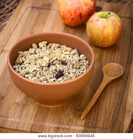 Oatmeal Cereal with Almonds and Dried Fruits