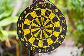 stock photo of bullseye  - an old dart bullseye hanged on a tree in a tropical jungle - JPG