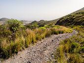 stock photo of canary  - Rocky landscape of Tenerife - JPG