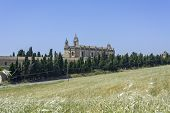 picture of carthusian  - Exterior view of the Cartuja monastery Jerez de la Frontera C - JPG