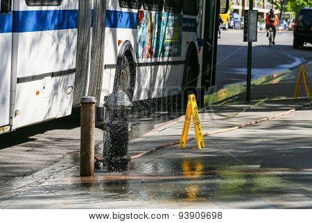 Wet Bus Stop