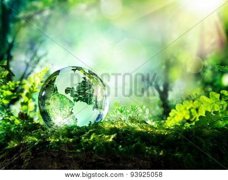 crystal globe on moss in a forest - environment concept