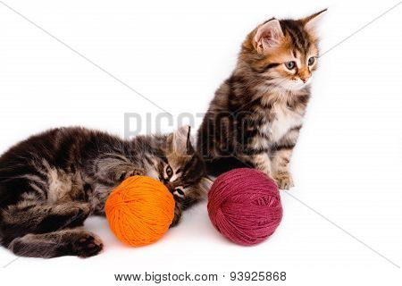 Two Cute Kittens With A Ball Of Thread On White Background