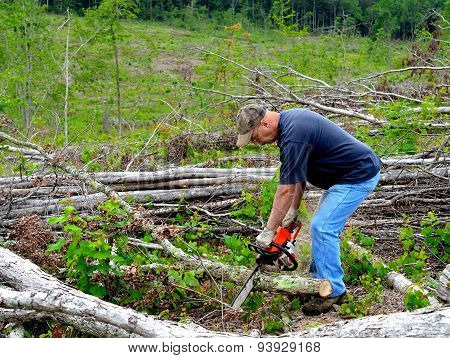 Man cutting firewood