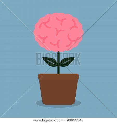 Brain Plant Pot