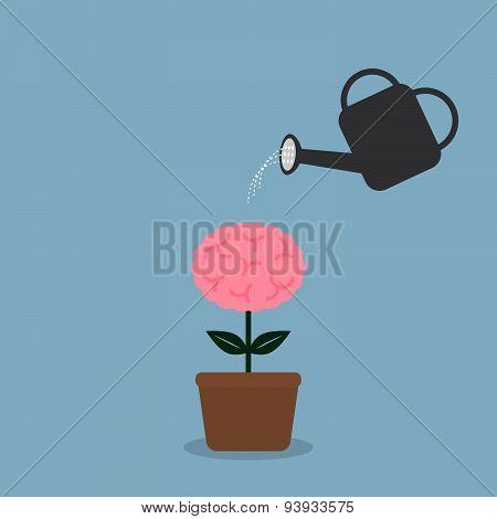 Watering Brain Plant