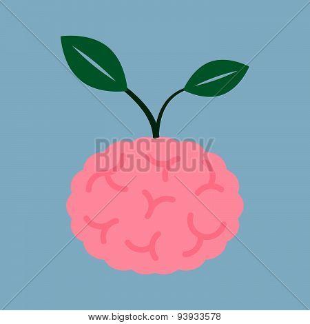 Brain Seed Plant