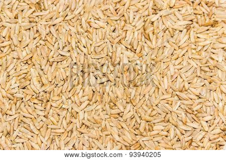 Grain Of Rye