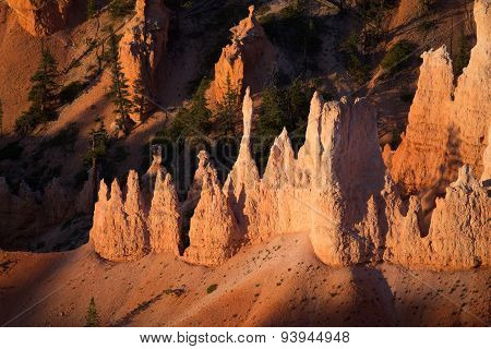 Sandstone pinnacles in Bryce Canyon National Park