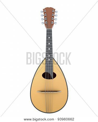 Mandolin Front View