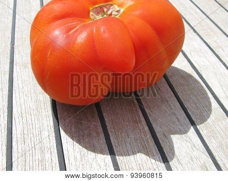 One large tomato on teak wood