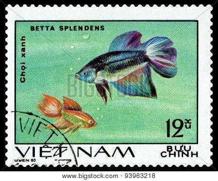 Vintage  Postage Stamp. Betta Splendens.