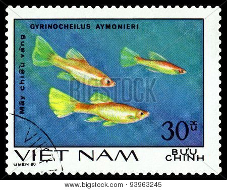Vintage  Postage Stamp. Gyrinocheilus Aymonieri.