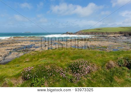 Newtrain Bay North Cornwall near Padstow and Newquay and on the South West Coast Path in spring