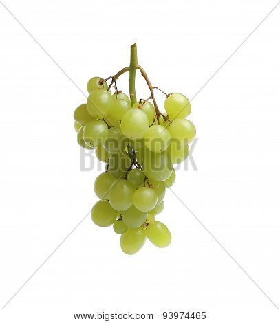 White Grape, Green, Isolated