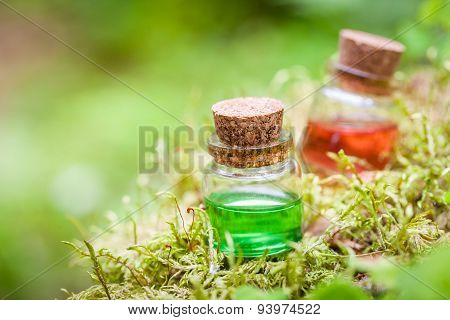 Two Bottles Of Essential Oil Or Magic Potion On Moss In Forest