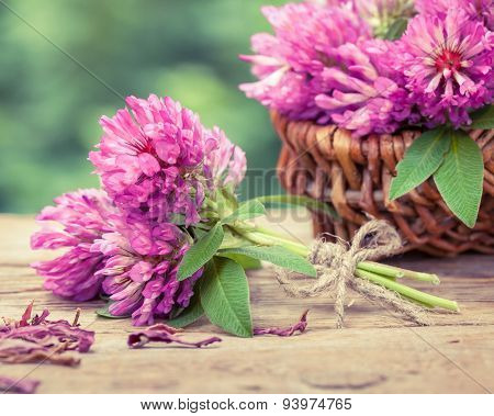 Bunch Of Clover And Basket With Flowers, Retro Stylized