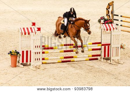 Equitation. Show Jumping, Horse And Rider Over Jump