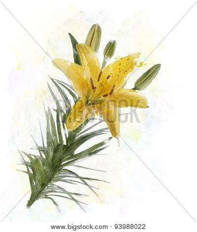 Digital Painting Of Yellow Lily Flowers
