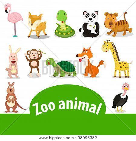Illustrator of zoo animal
