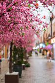 stock photo of flower shop  - Fake pink sakura flowers decorated in Japanese style shopping mall - JPG