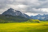 stock photo of italian alps  - Green and yellow blooming meadow set amid idyllic mountain landscape with dramatic stormy sky - JPG