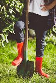 image of woman boots  - Closeup toned photo of young woman holding leg in rubber boots on shovel at garden - JPG