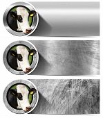 picture of cow head  - Three horizontal metal banners with space for text head of cow inside a circle - JPG