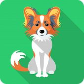 stock photo of toy dogs  - Vector serious dog Papillon red and black dog sitting icon flat design - JPG